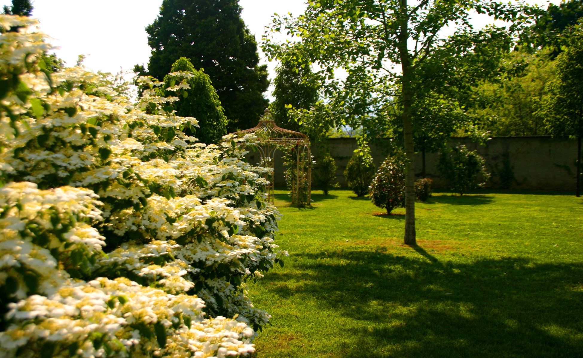 location matrimonio con parco pinerolo